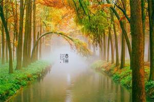 【我是达人】【重游泰州】慢游养生境,寻觅尘世幸福