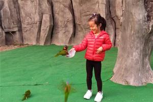 我是达人:上海野生动物园--带着女儿去旅行