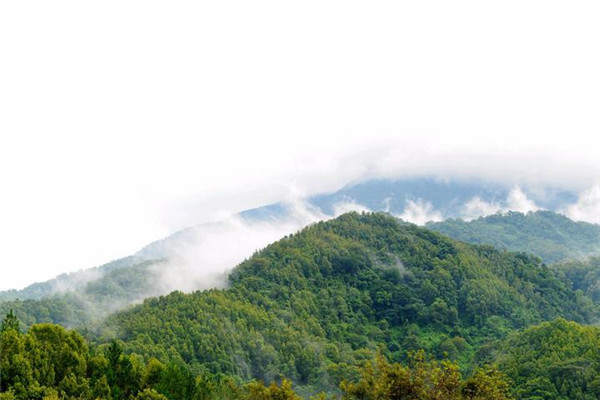 【我是达人】走海南:五指山水满热带雨林