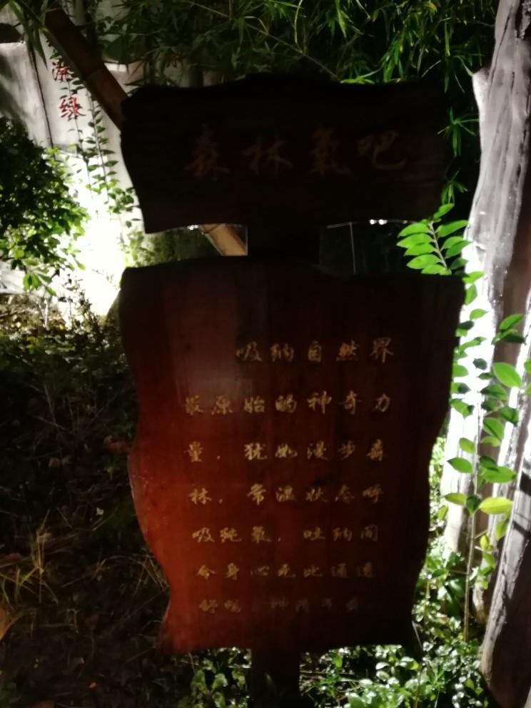 杭州湾海底温泉