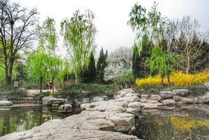 【暖冬双旦礼】单车自驾:春游北京植物园