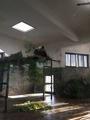 杭州动物园
