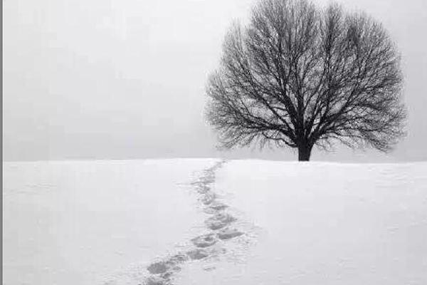 轻盈脱俗的世外桃源,不容错过的雪谷美景,最具特色的东北火锅,附带雪乡旅游攻略