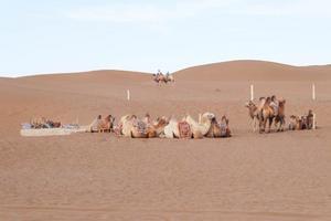 【我是达人】【甘肃+新疆】翻越一山又一山,丝绸一带又一路。