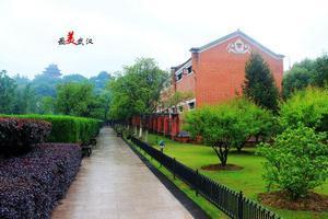 【我是达人】湖北|九省通衢,感受武汉三镇的异样风情