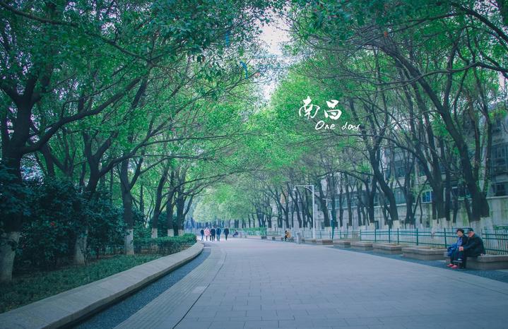 【weekender快乐箱随】三月寻花于江右,青砖黛瓦梦归处