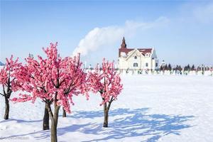 【我是达人】冰雪里北欧式的浪漫,快乐像东北的童年