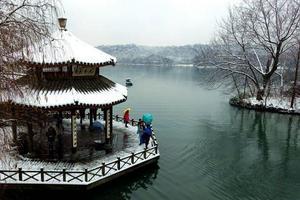 十年不遇的大雪后,看尽杭州景