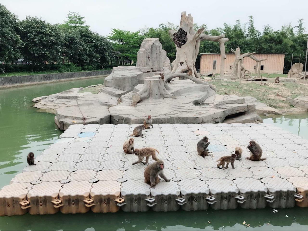 寮步香巿动物园好玩么?