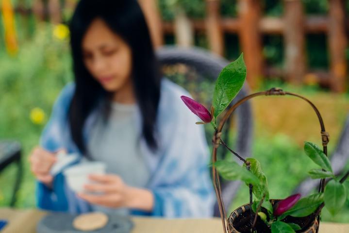 【我是达人】平武豆叩|禅茶小镇品禅茶,尽享人间慢生活!_四川绵阳豆叩旅行