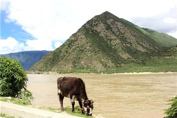 【kneipp春油季】静栖于雅鲁藏布江和南迦巴瓦峰之间的喜玛拉雅大峡谷酒店