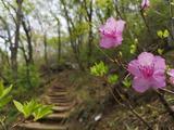 北京云蒙山国家森林公园