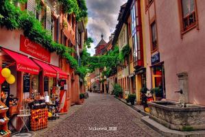 法国凡尔赛宫和莫奈花园之旅——寻找大师画中的光影和色彩