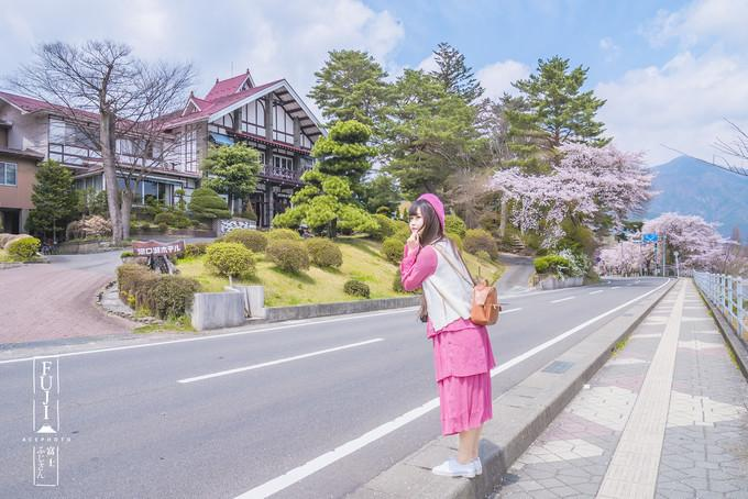 【我是达人】春日之暮,邂逅樱花落成雨丨日本10日赏樱之旅(上)