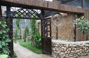 【多彩户外】全年免费游呀古路热带植物园
