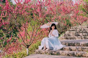 【我是达人】山城重庆春之秘境大盛樱花-南山植物园-彩云湖