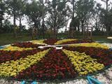 上海浦江郊野公园