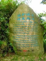 【我是达人】《吴淞炮台湾湿地森林公园(三)》(湿地)