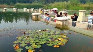 【我是达人】【随拍】徐州云龙湖沉水廊道