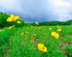 【我是达人】夏日物语,遇见长春二十二度的清凉