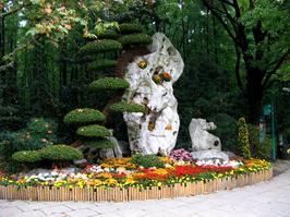 【我是达人】共青森林公园(2)