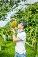 【我是达人】自驾马来西亚|怀念在水果农场捡榴莲吃的时光。