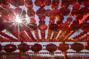 【我是达人】#冬季北京#我在北京过大年,逛延庆庙会