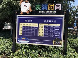 亲子必游丨武汉海昌极地海洋公园,看这一篇就够了!