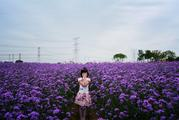 上海寻梦源香草农场