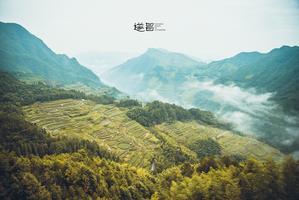 【我是达人】坐看仙境山云涌动,造访红色文化古镇丨遂昌3日休闲游