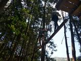 泉州洛江石龙谷森林公园