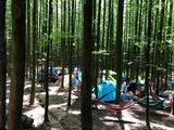 山王坪喀斯特国家生态公园