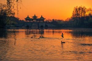 【我是达人】和全世界的朋友走过扬州的夏日