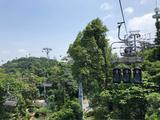 新加坡斜坡滑车和吊椅