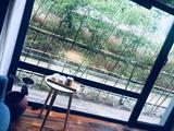 莫干山客堂间遊者温泉度假酒店