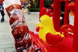 【背着Doughnut去旅行】纪念鸡年第一飞