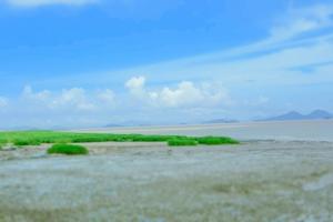 【台州唐诗之路】一路与你相伴,共赴山海之约~我的台州行