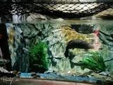 温州海洋馆