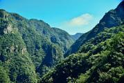 楠溪江龙湾潭森林公园