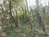 铁山寺国家森林公园
