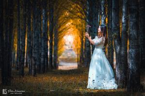 【旅行中的摄影师】自驾川西,行走在云端的日子里,和你看一场秋天的童话