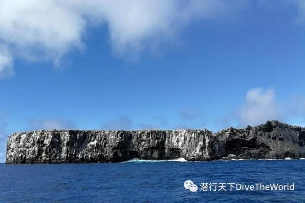 海陆空,加拉帕戈斯最有深度的资讯之《海洋生物篇》