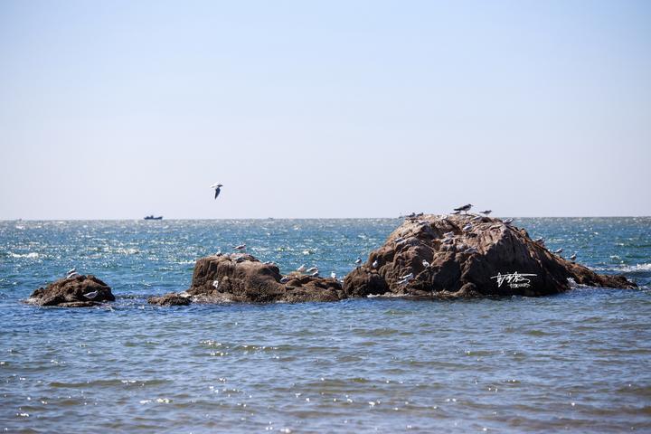 【旅行中的摄影师】沿着这条海岸线走一圈,发现不一样的海岛城