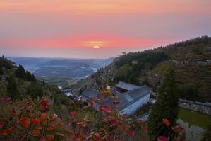 后山红叶艳银杏披金甲来长春观感受秋冬变幻的狂欢