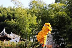 环抱竹海,畅享温泉,这样的周末醉人生!