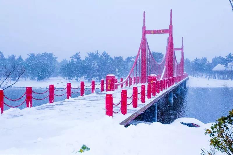 赏雪景,看天鹅,泡温泉,品美食,观影片,威海冬天的正确打开方式在这里!