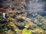 江和美海洋公园