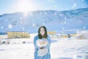 冬游北疆指南|冰雪童话王国,美食吃不断美景看不完