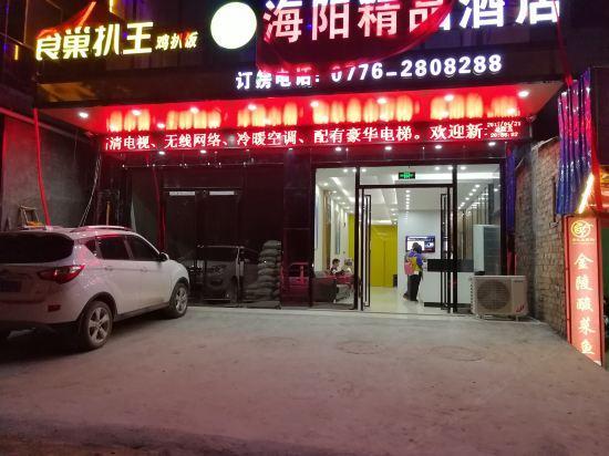百色海阳精品酒店店