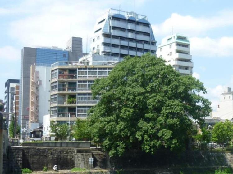 京都富豪酒店